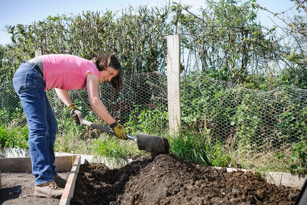 Digging over and mounding up the soil