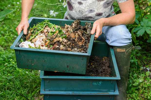 How to set up a wormery