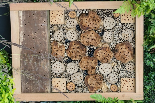 picture-frame-style-bee-hotel-with-drilled-logs-and-hollow-stems