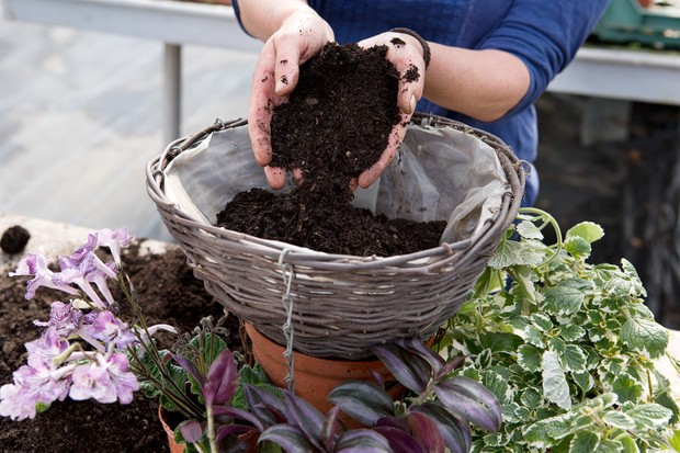 Filling the basket with compost