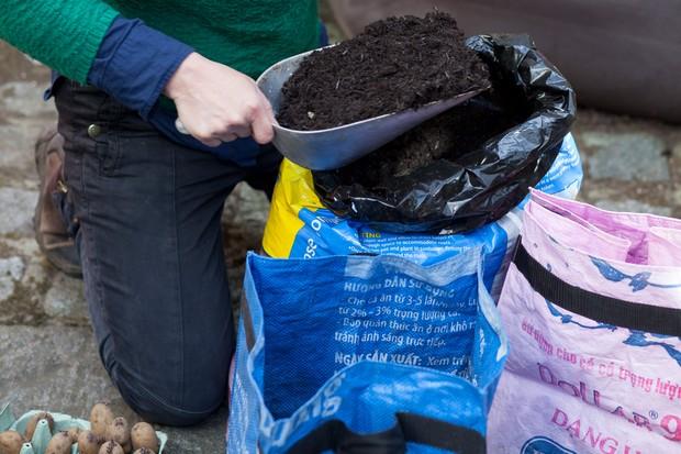 preparing-potato-sack-for-planting-2