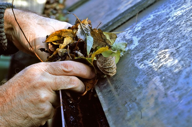 clearing-leaves-from-greenhouse-guttering-2