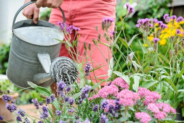 watering-the-garden-6
