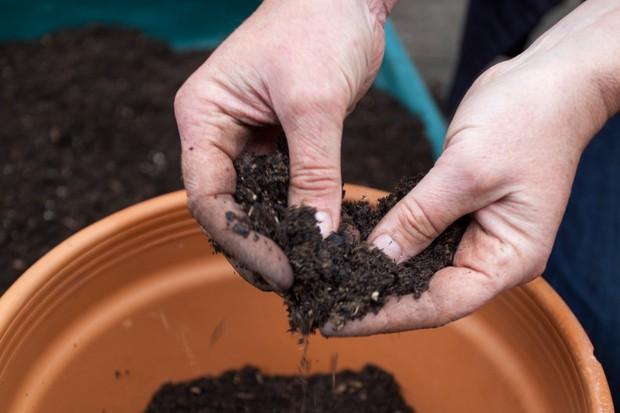 peaty-soil-2