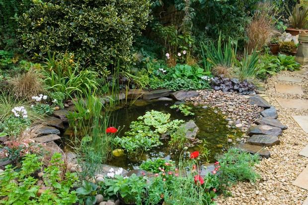 garden-pond-6