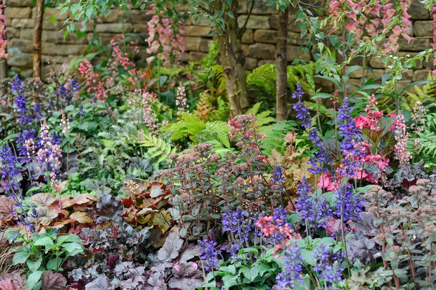 colourful-border-for-shade-3