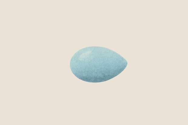 dunnock-egg-3
