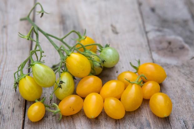 tomato-ildi-2