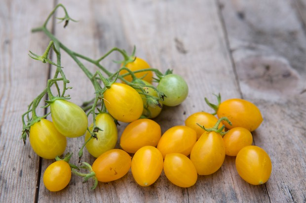 Pear-shaped, yellow 'Ildi' cherry tomatoes
