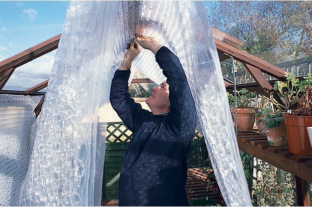 fixing-bubble-wrap-to-the-greenhouse-roof-2