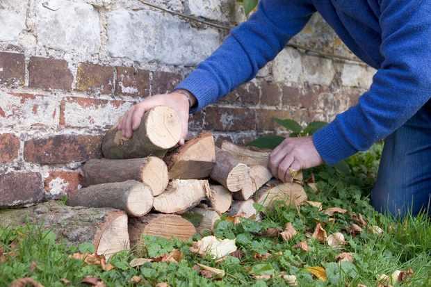 making-a-log-pile-2