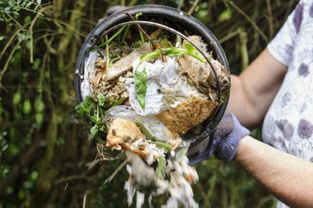 Feeding plants - making compost