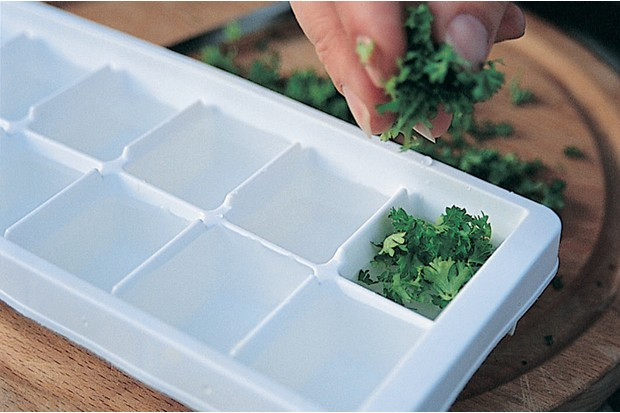 Adding herbs to the ice cube tray