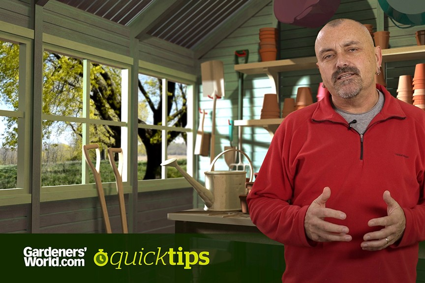Quick Tips What replaces Bordeaux mixture