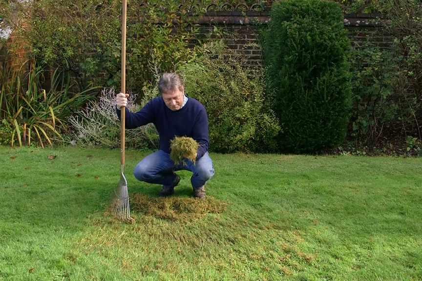 Scarifying a lawn video