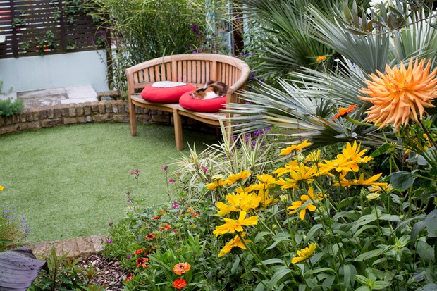 12 Tips For A Dog Friendly Garden Bbc Gardeners World Magazine