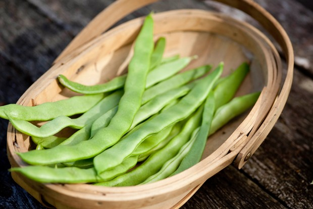 Runner beans harvested into a wooden basket