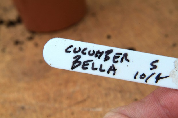 Using plant labels