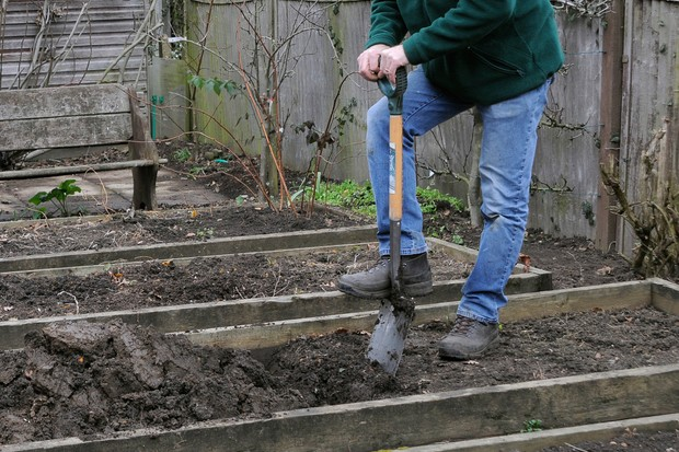 Digging soil in a raised bed