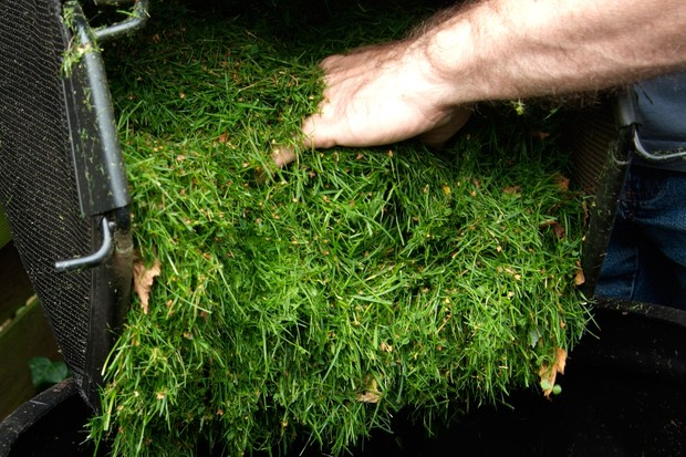 Adding lawn-clippings to a compost bin