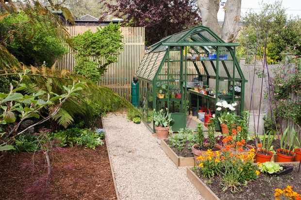 How to choose a site for your greenhouse
