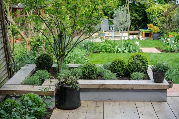 get-the-best-from-wet-soil-build-raised-beds-3