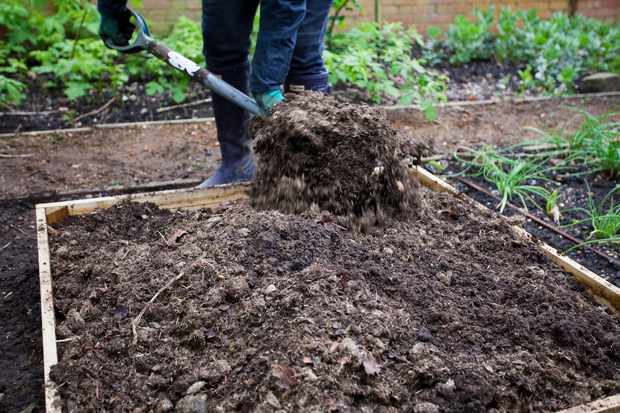 Is it possible to use too much manure?