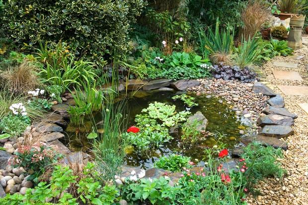 wildlife-garden-3