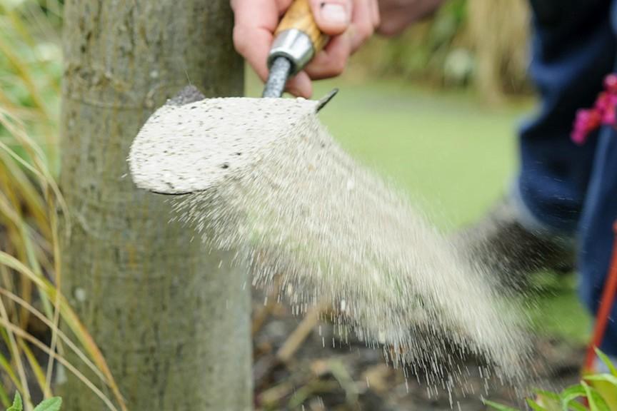 How do I perk up soil under trees