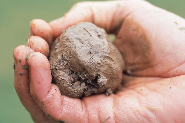 A ball of wet clay soil