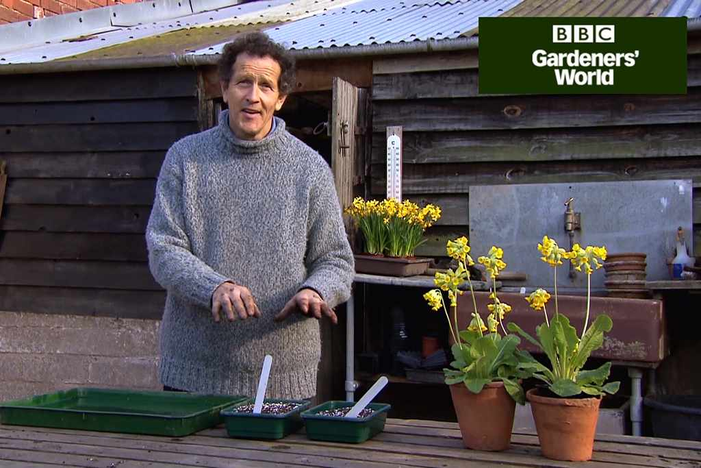 How to sow ornamental grasses video