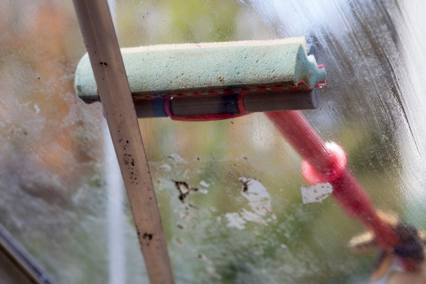 cleaning-greenhouse-glass-with-a-mop-2
