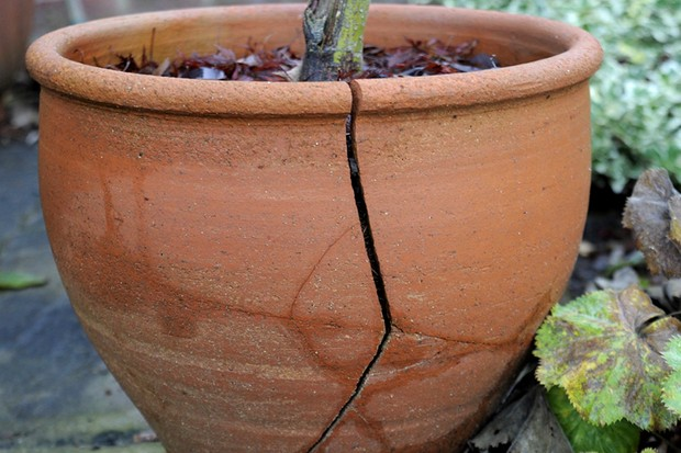 How do I stop terracotta pots cracking?