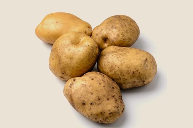 potato-sante-2