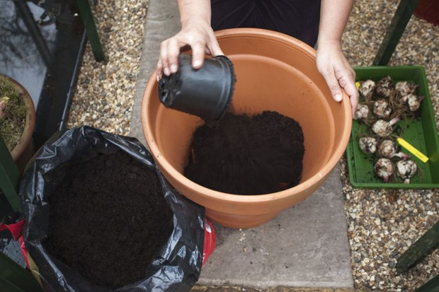 adding-compost-3