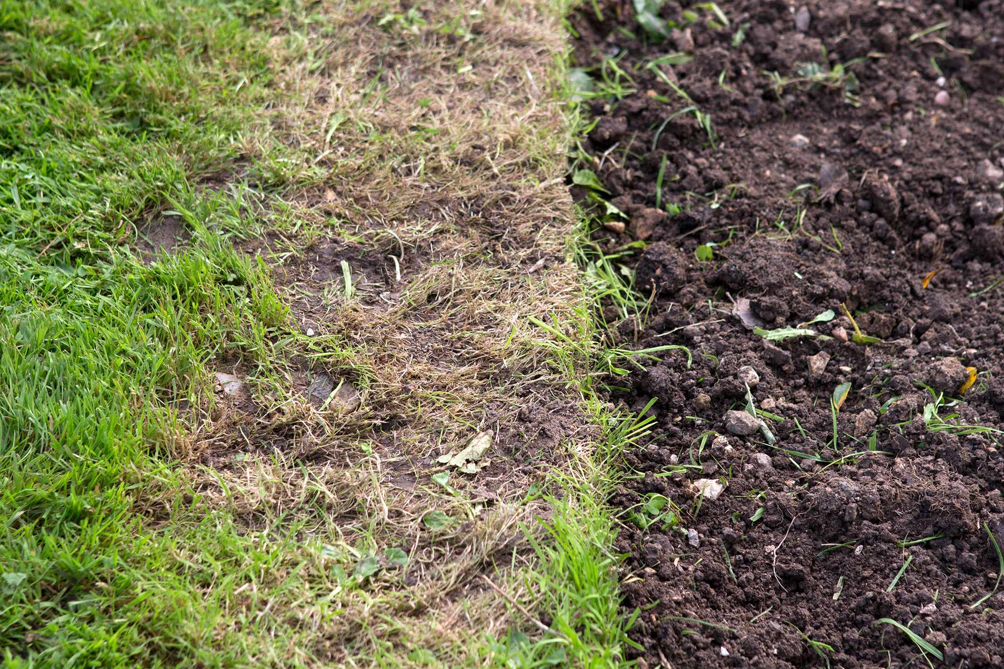 A lawn edge that needs repairing