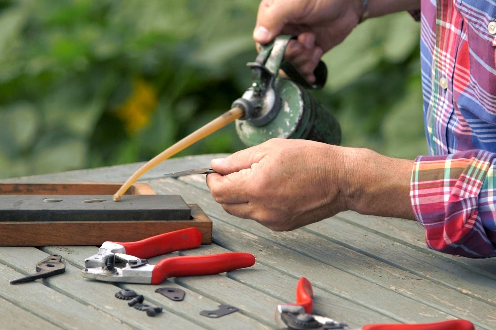 No Fuss Guide Sharpening secateurs