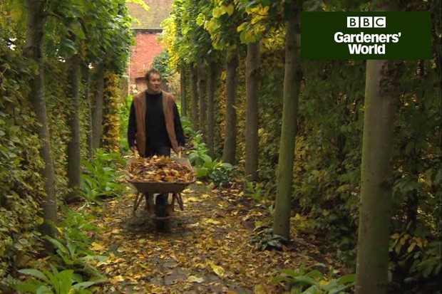 How to make leafmould in plastic sacks video