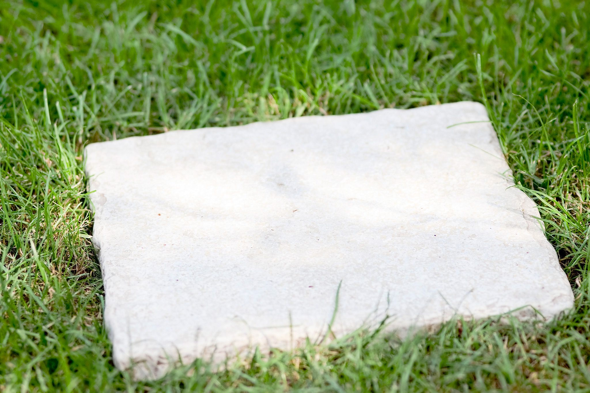 Bare Patches Can Develop Where A Lawn Is Regularly Walked On. Create A Path  Or Lay A Series Of Stepping Stones, To Reduce The Strain On The Grass.
