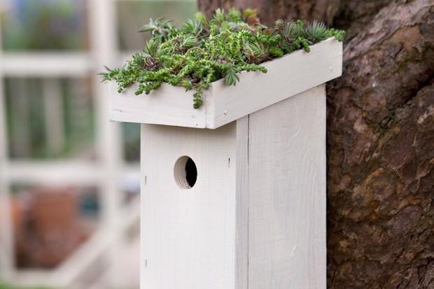 bird-boxes-2