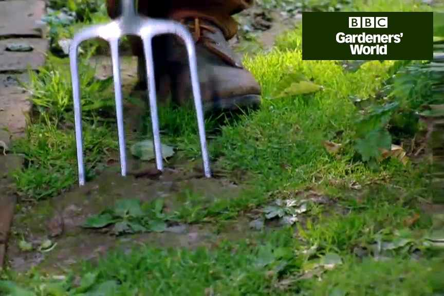 How to repair bare patches in lawns video