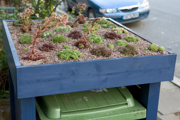 wheelie-bin-tidy-garden-idea-with-green-roof-2