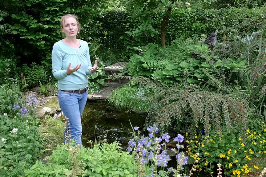 Creating a wildlife pond