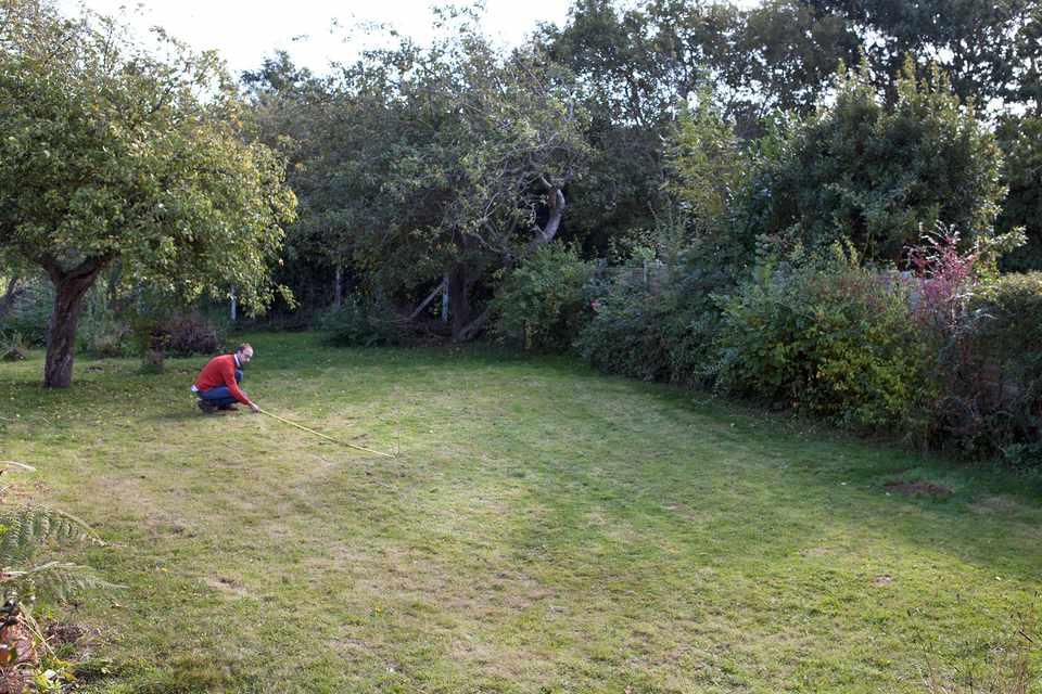 Measuring an area in a new garden
