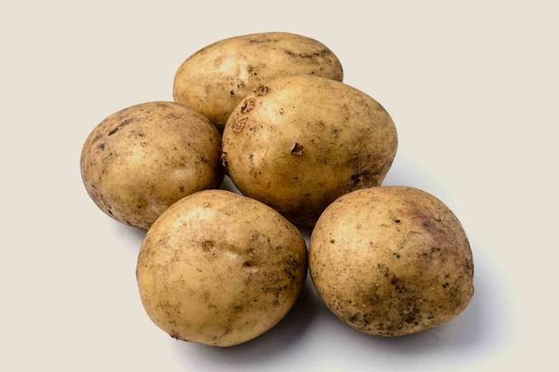 potato-marfona-2