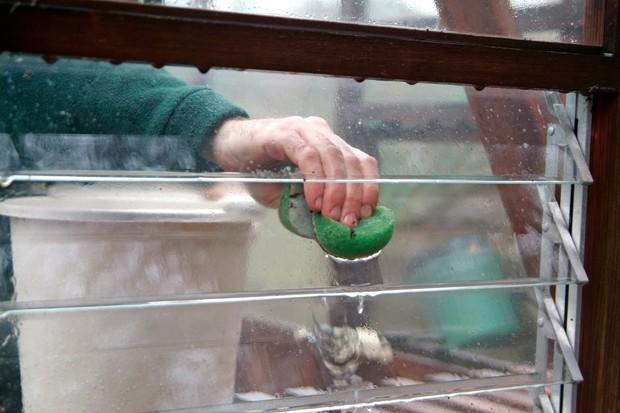 greenhouse-glazing-3