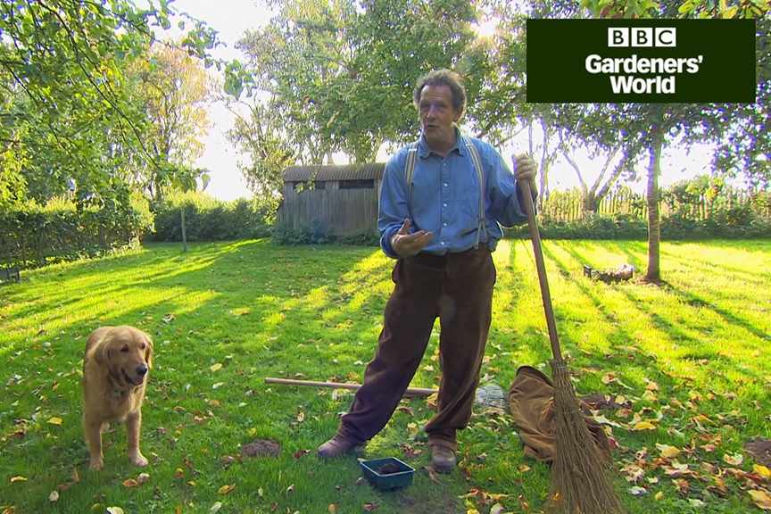 How to look after your lawn in autumn