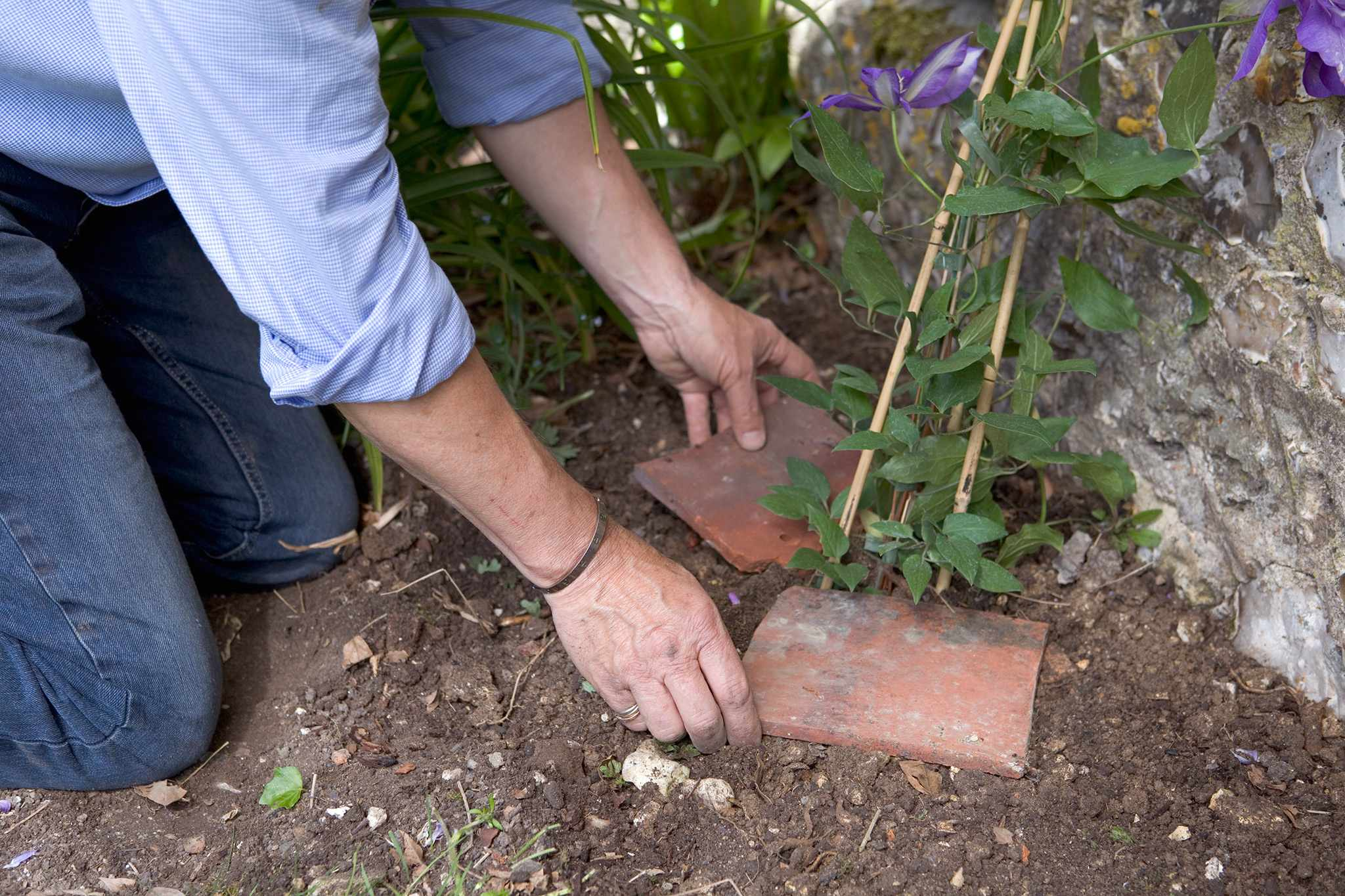 Placing tiles over the roots