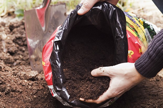 Adding compost to the planting hole