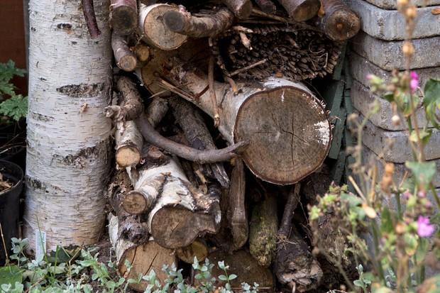 Make a log pile